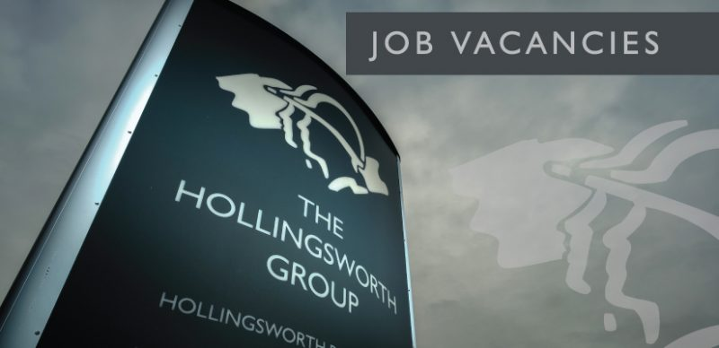jobs hollingsworth group